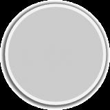 Reflections - Platinum Metallic